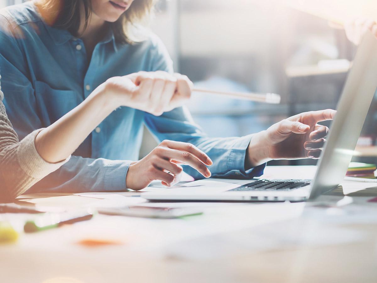 branding and design, Torn Marketing – Branding and Design